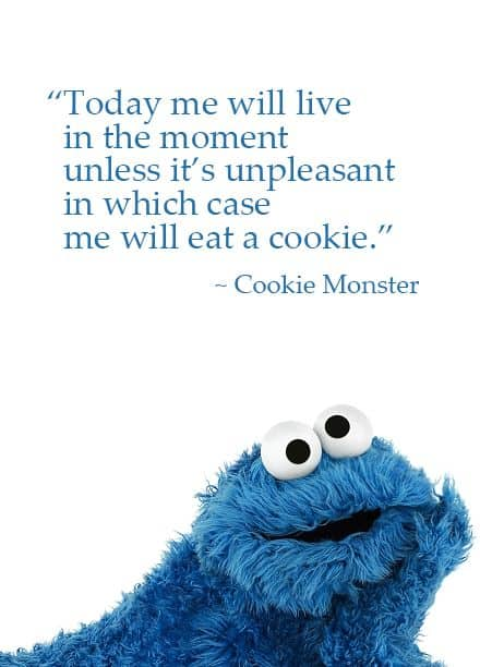 New Cookie Monster book~The Joy of Cookies